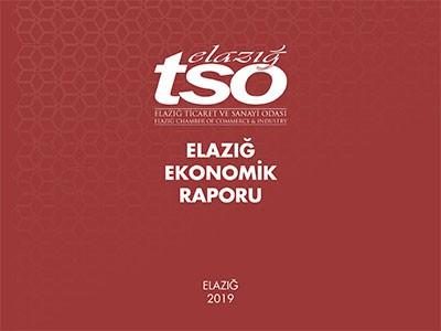 Elazığ Ekonomik Raporu 2019