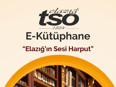 Elazığ'ın Sesi Harput